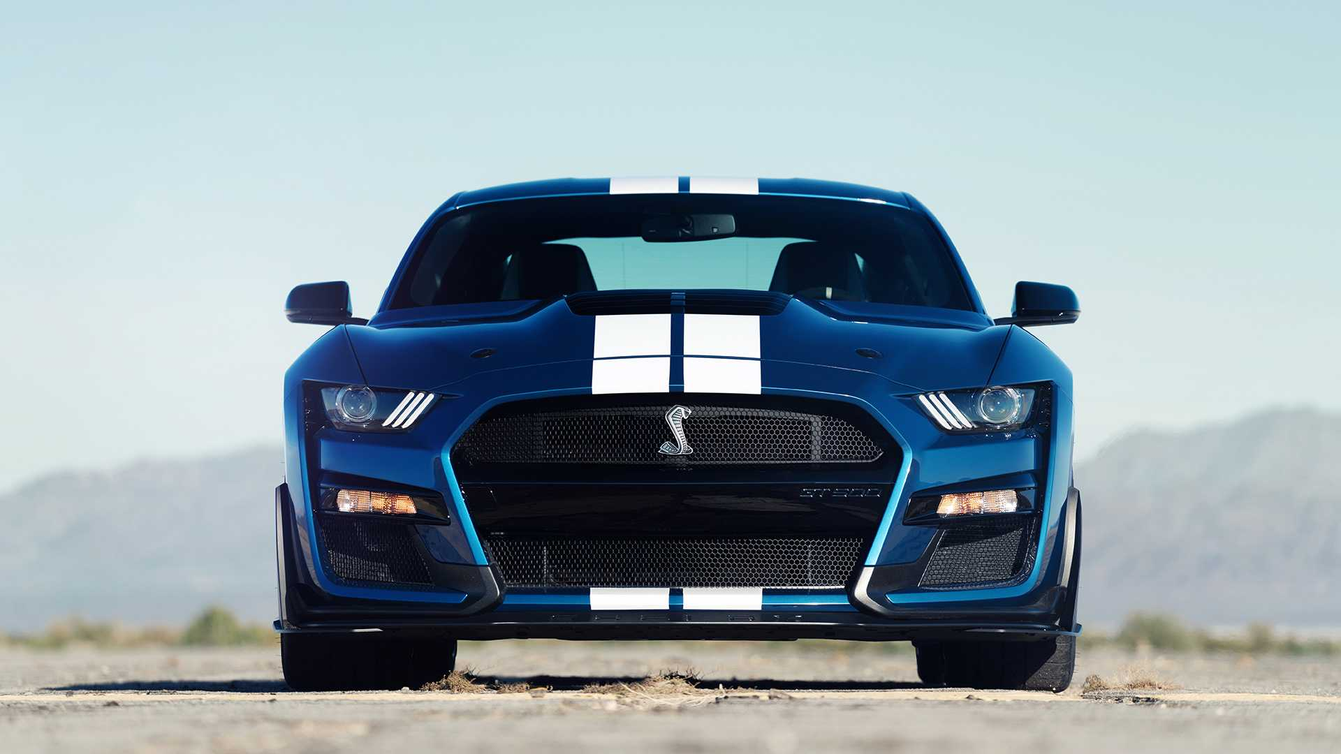2020-ford-shelby-gt500-5.jpg | Mustang Mach-E Forum